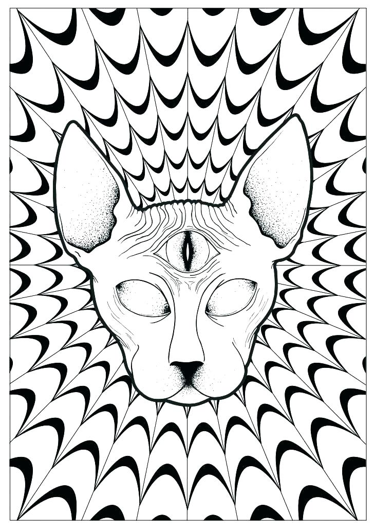728x1030 New Convert Photos To Coloring Pages And Beautiful Convert Photo