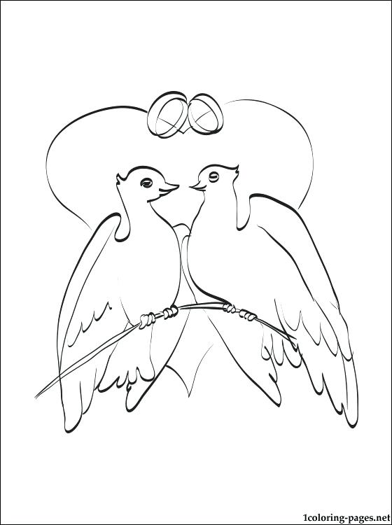 560x750 Doves Coloring Pages Back To The Coloring Pages Index Peace Dove