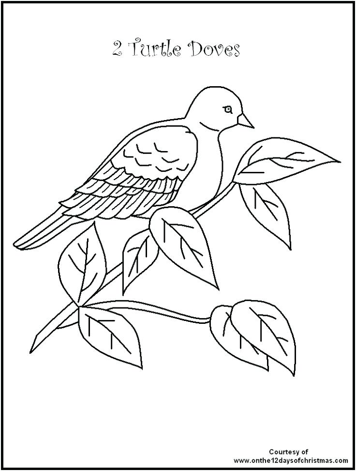 736x973 Twelve Days Of Christmas Coloring Pages Twelve Days Of Coloring