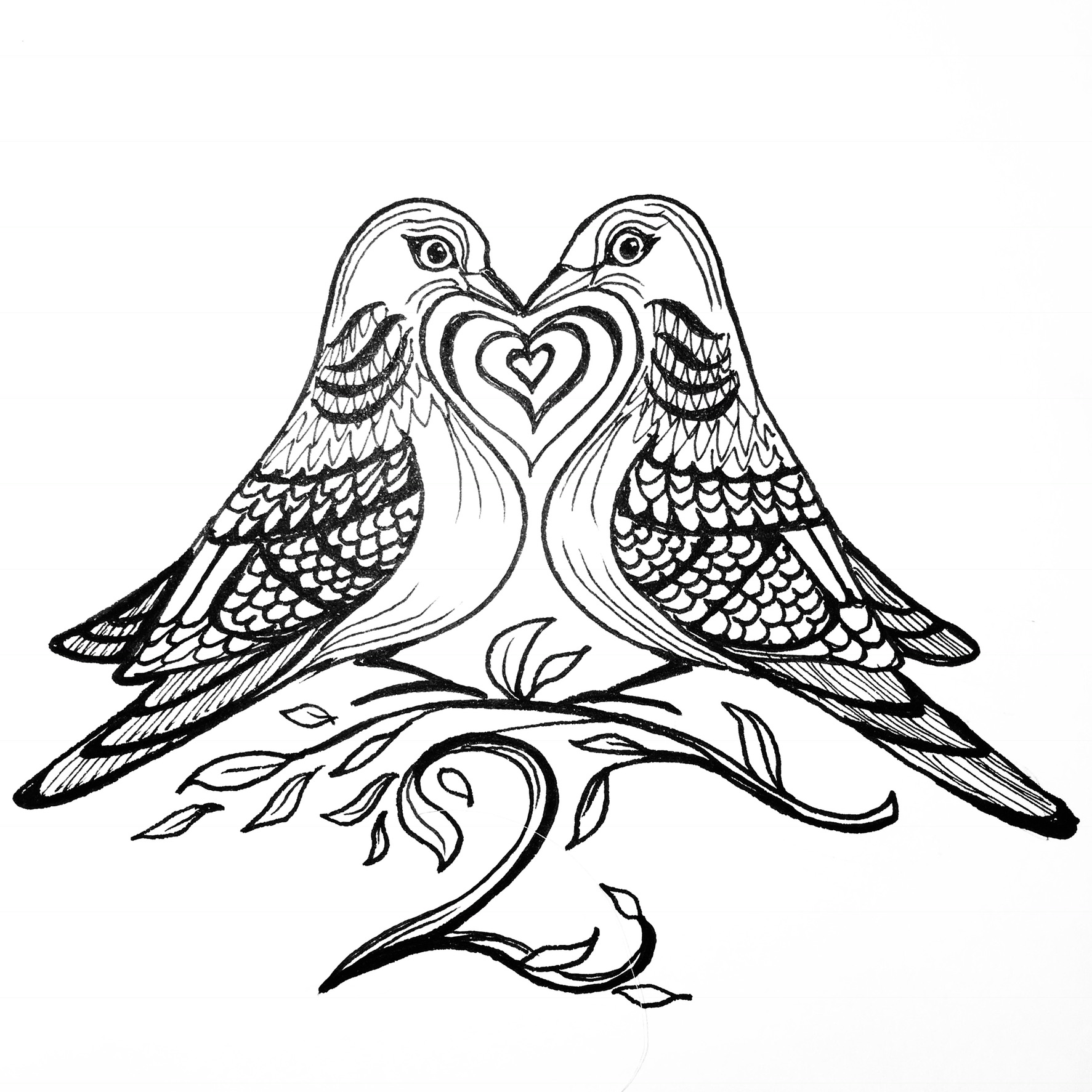 1773x1773 Two Turtle Doves.