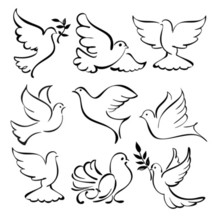 220x220 Abstract Dove Sketch Set Vector Illustration Laser And Print