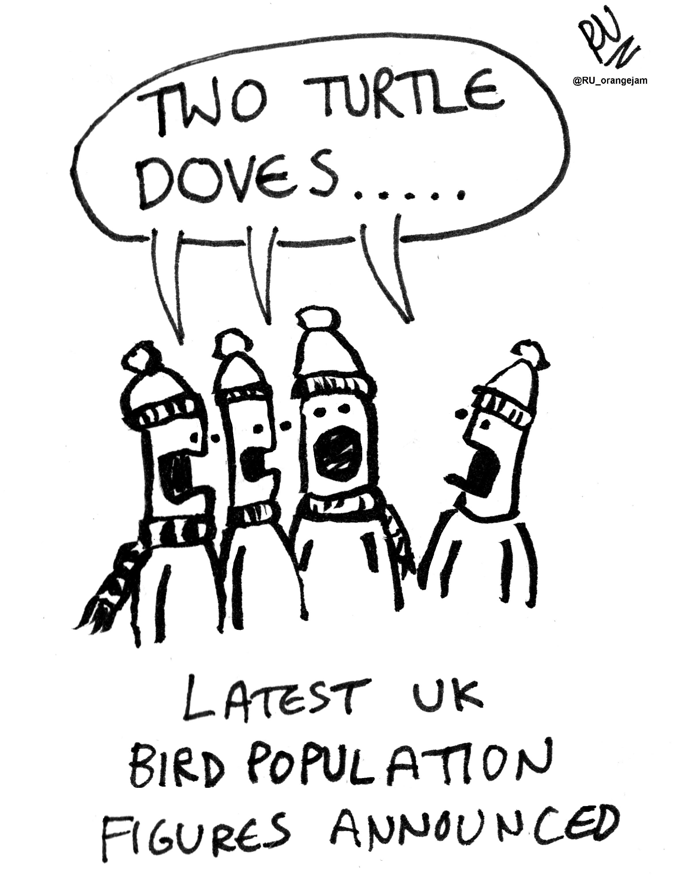 2360x3048 Turtle Doves