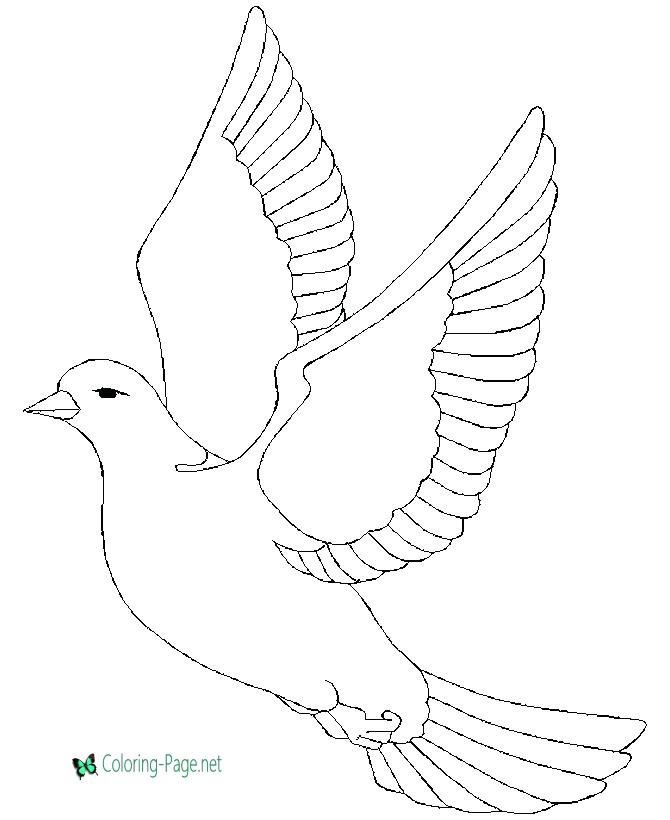 670x820 Dove Coloring Page Dove Doodle Colouring Page More 2 Turtle Doves