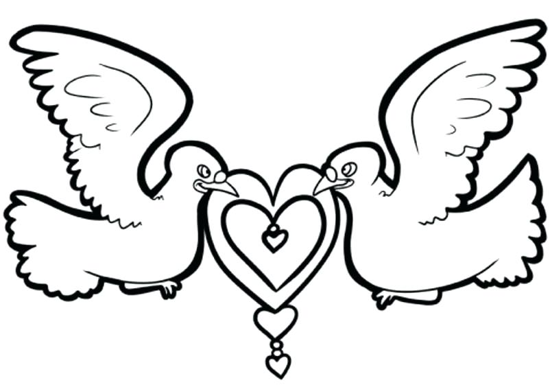 802x564 Dove Coloring Page Fabulous Turtle Dove Coloring Page Around