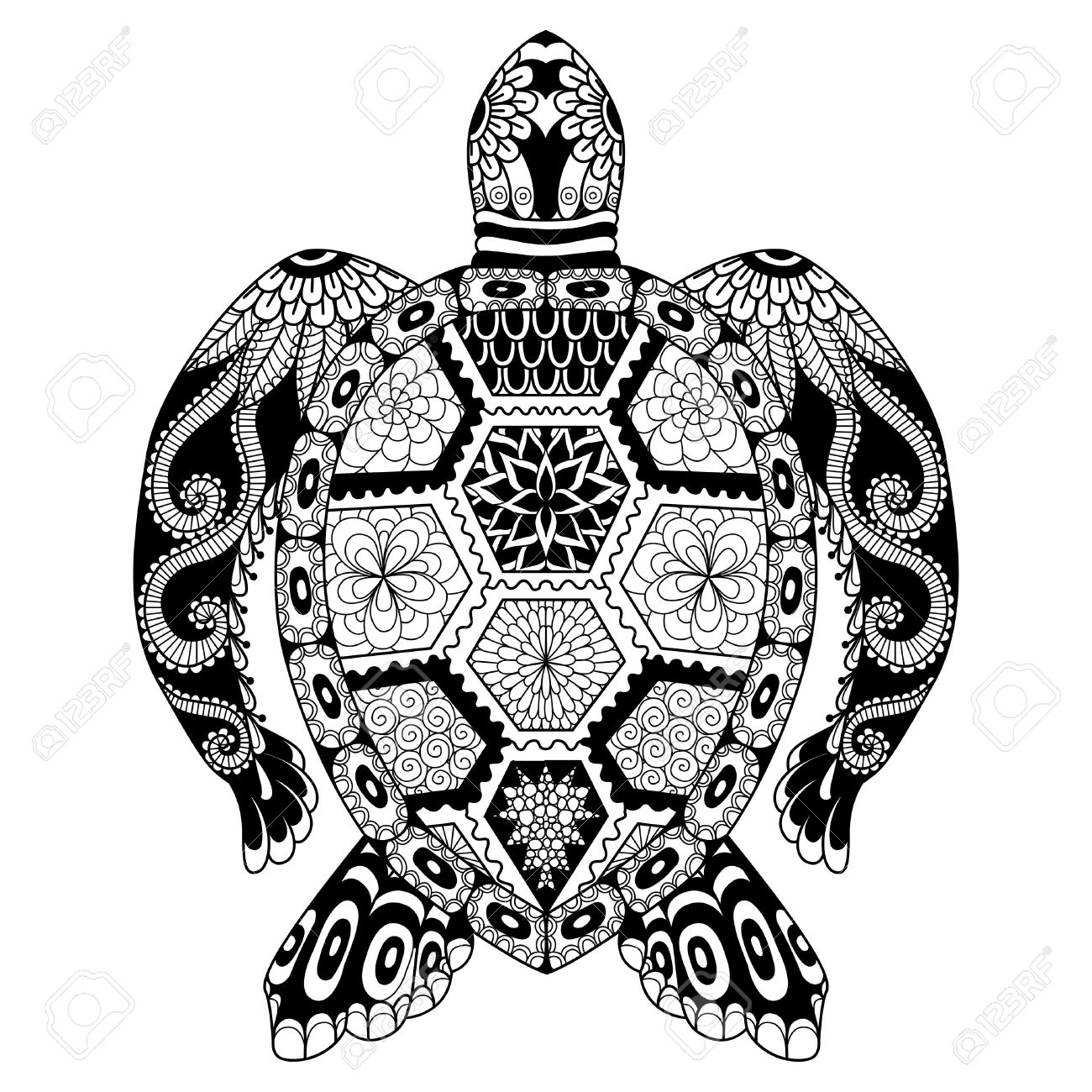 Turtle Drawing at GetDrawings.com | Free for personal use Turtle ...