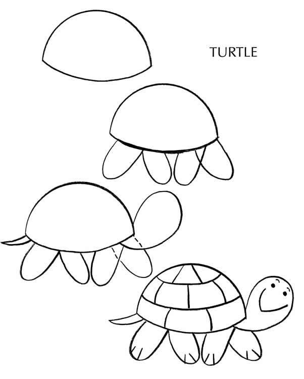 602x750 Como Desenhar Uma Tartaruga 4 + Crafts Drawings