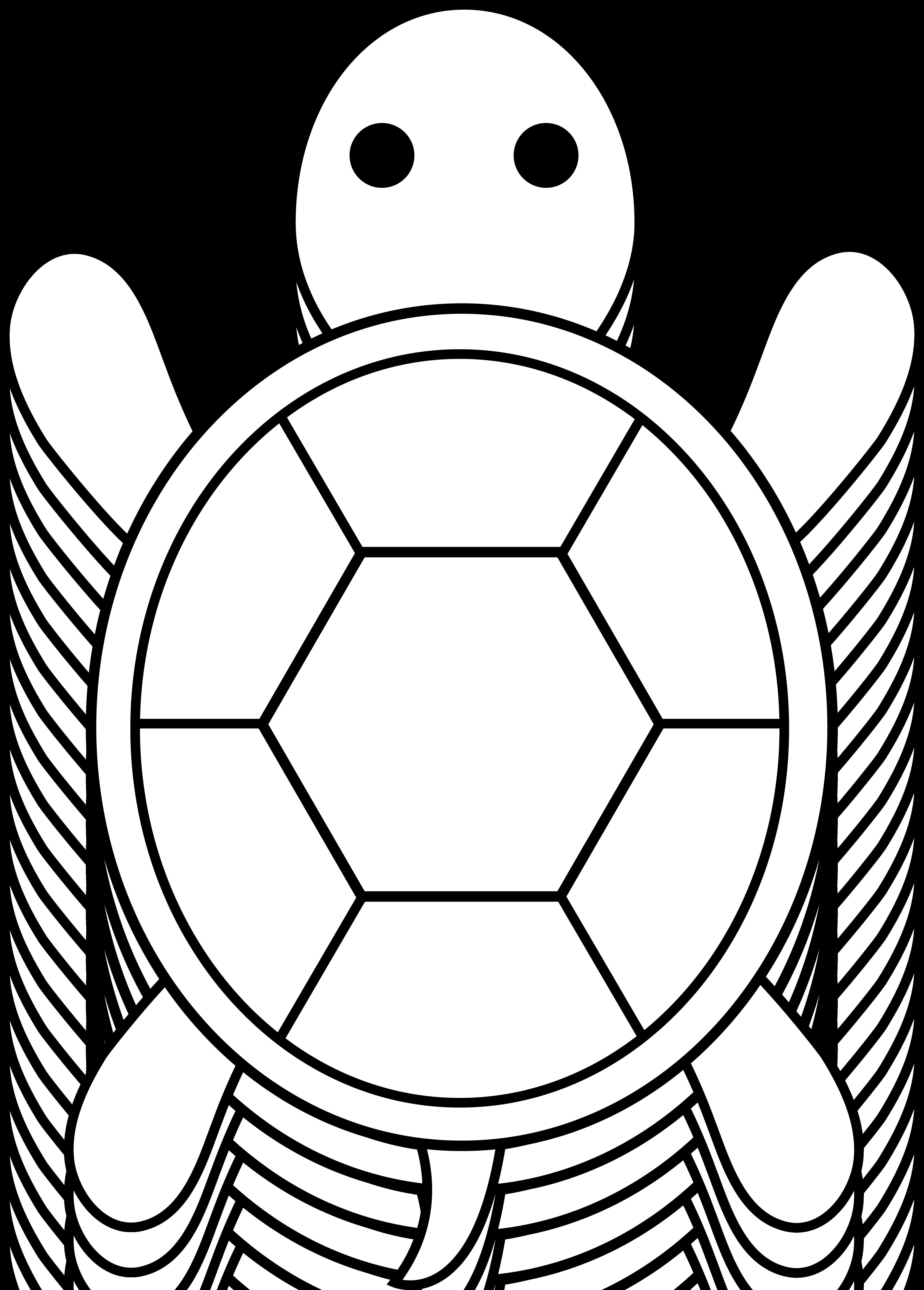 5178x7226 Turtle For Applique Applique Turtle, Outlines