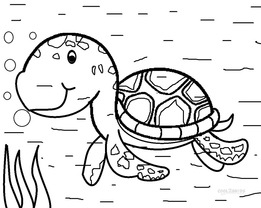 850x680 Printable Sea Turtle Coloring Pages For Kids Cool2bKids