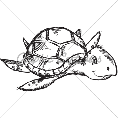 500x500 Sketch Of Turtle Turtle Baby Shower Turtle