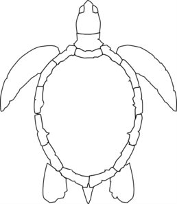 258x297 Turtle Outline Md Gourd Tools And Patterns