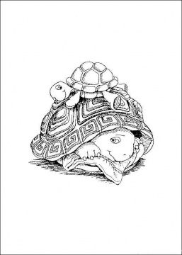 257x360 Real Sea Turtles Swimming In Water Turtle Coloring Pictures