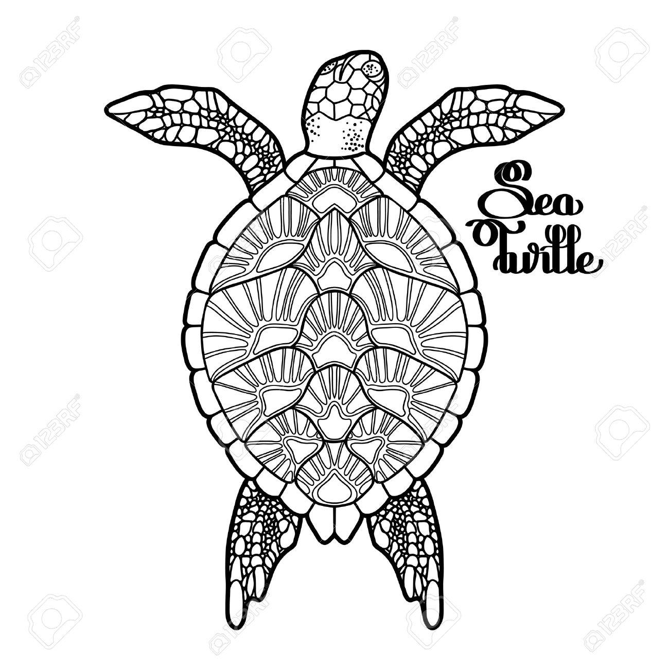 1300x1300 Graphic Hawksbill Sea Turtle Drawn In Line Art Style. Ocean Vector