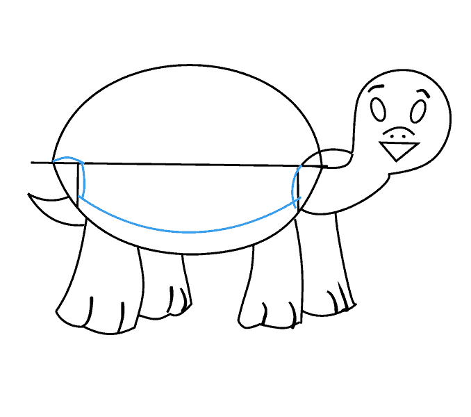 678x600 How To Draw A Turtle Easy Step By Step Drawing Guides