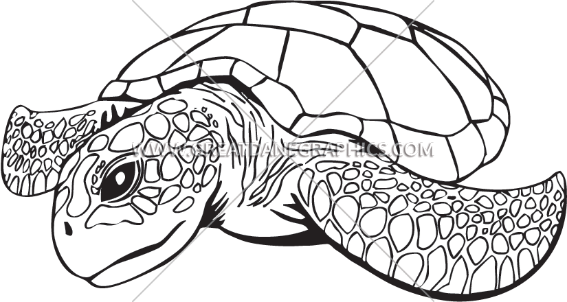 825x440 Sea Turtle Production Ready Artwork For T Shirt Printing