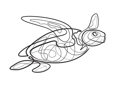 400x300 Single Line Turtle By Jonathan Russo