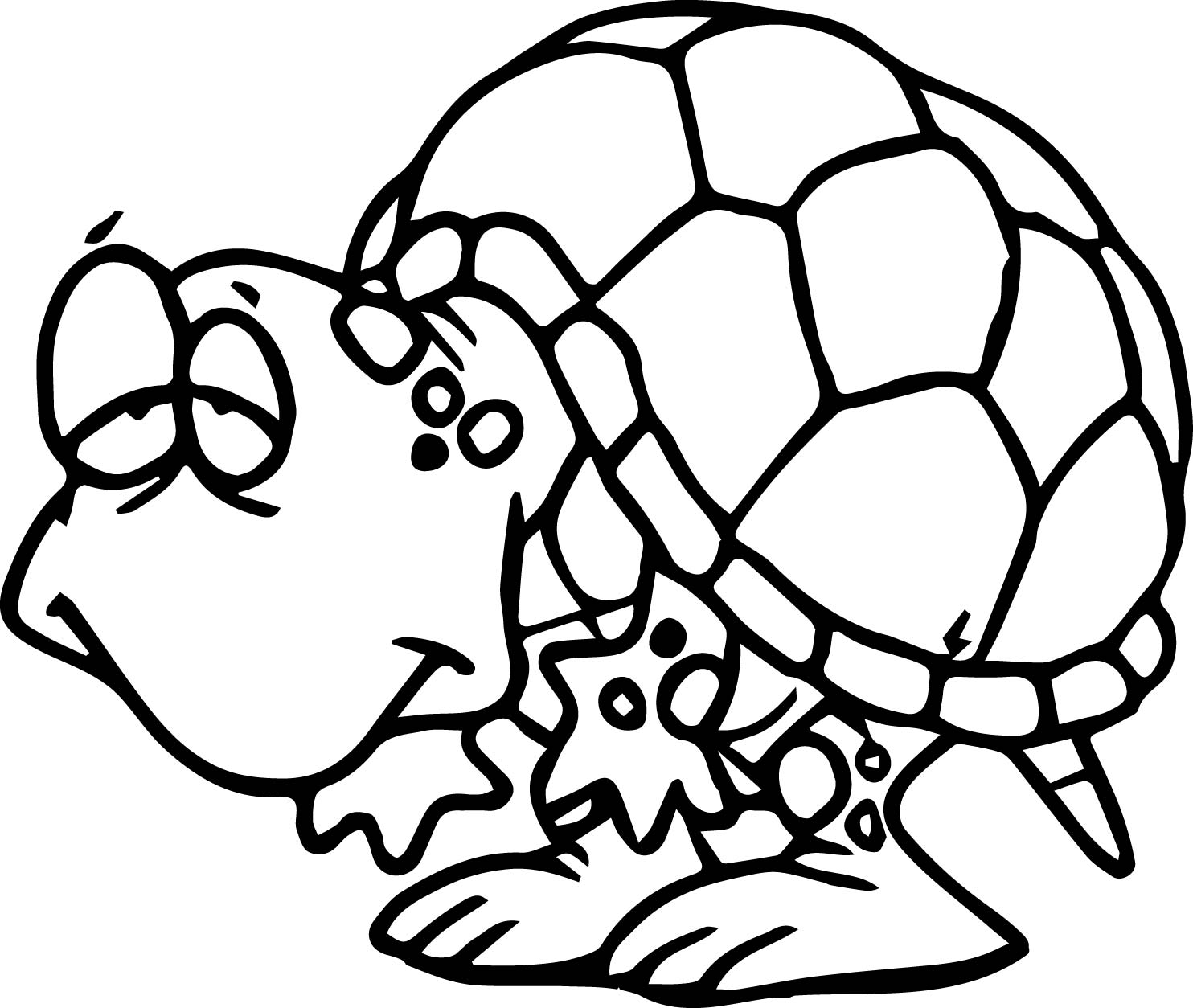 1484x1254 Slow Tortoise Turtle Coloring Page Wecoloringpage