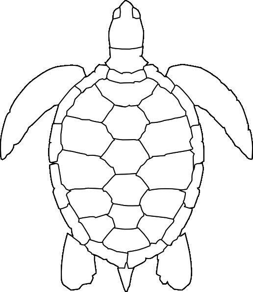 516x594 Turtle Outline Clip Art