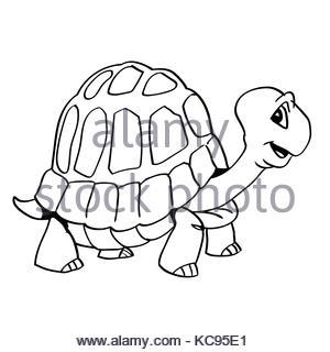 300x320 Turtle Cartoon Stock Photo, Royalty Free Image 72698806