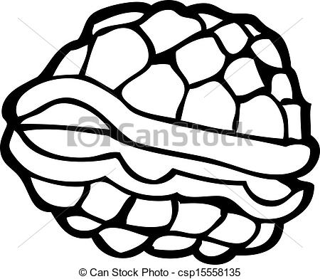 450x392 Turtle Shell Drawing
