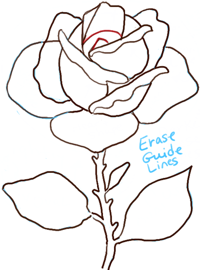 400x539 How To Draw Roses Step By Step Tutorial