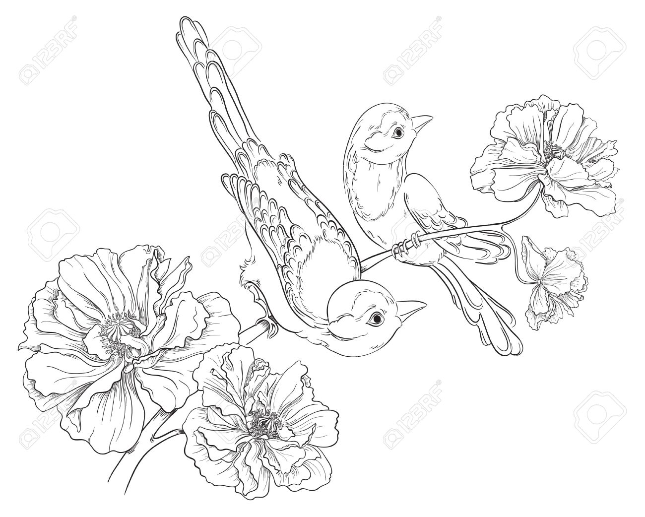 1300x1042 Two Birds Sitting On Blooming Roses Flower Background Vector