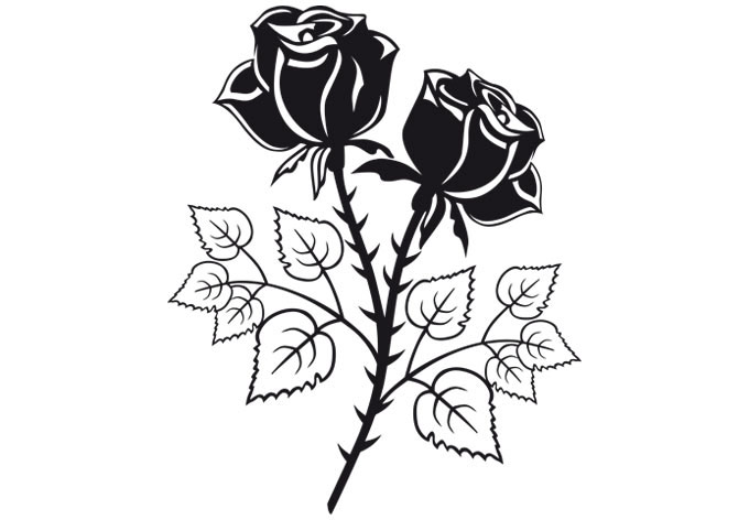 680x472 Two Roses Wall Decal
