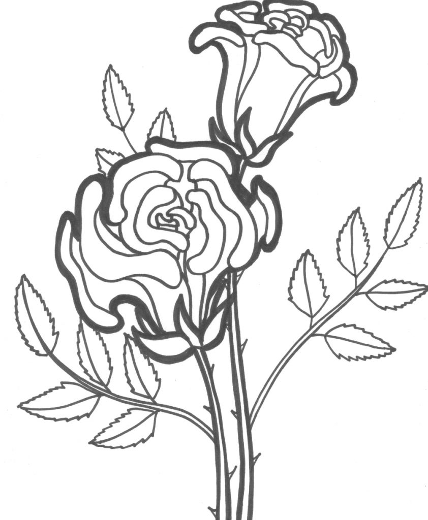 842x1024 Beautiful Two Roses Coloring Pages Download Free Coloring Book