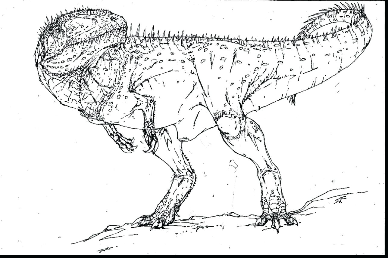 Tyrannosaurus Rex Skeleton Drawing at GetDrawings.com | Free for ...