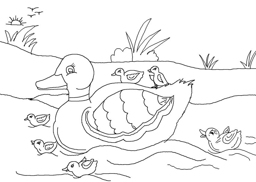 Ugly Duckling Drawing at GetDrawings.com | Free for personal use ...