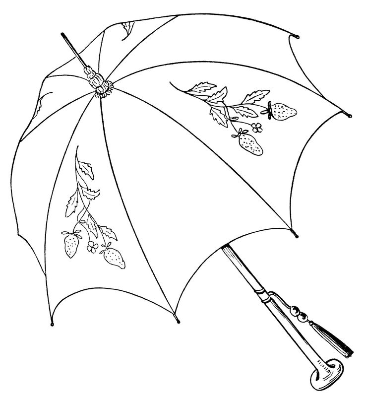 736x806 Drawn Umbrella Parasol