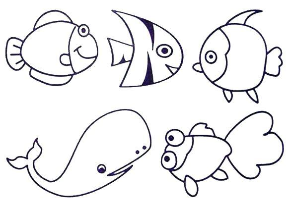 580x424 Undersea Creatures Coloring Page Sea Animals Pages