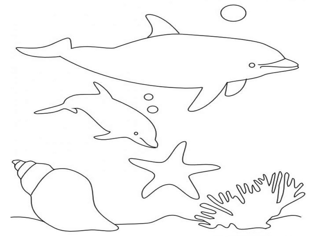 1024x768 dolphins under sea coloring page free to print free coloring - Under The Sea Coloring Pages 2