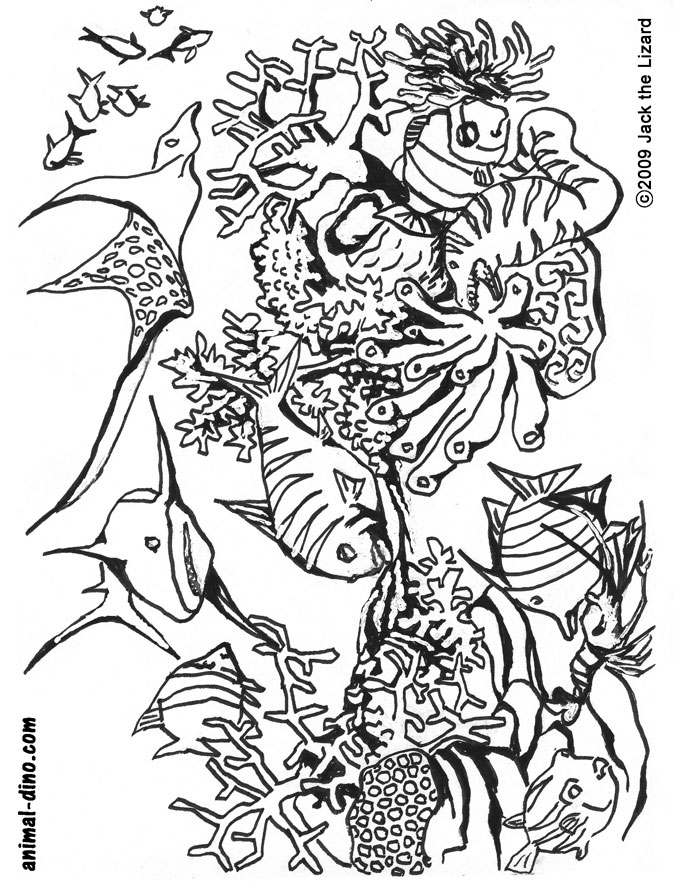 1024x768 Drawn Sea Life Colouring Picture 673x883 Fun Activities