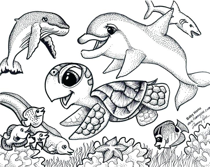 724x576 Sea Turtles Coloring Pages Turtle Under The