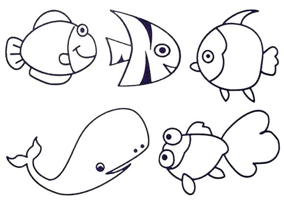 580x424 Marine Life Coloring Pages Sea Life Coloring Page Ocean Life