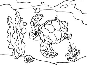 300x225 Drawn Sea Turtle Underwate Animal
