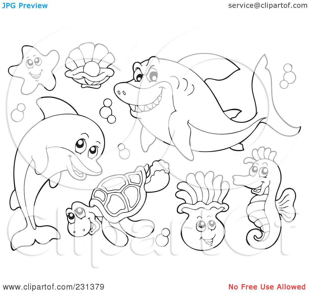 1080x1024 Free Coloring Pages Of Underwater Animals