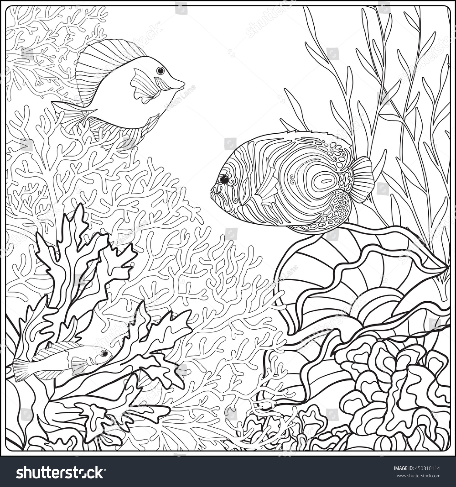 1500x1600 Adult Coloring Book Page With Underwater World Coral