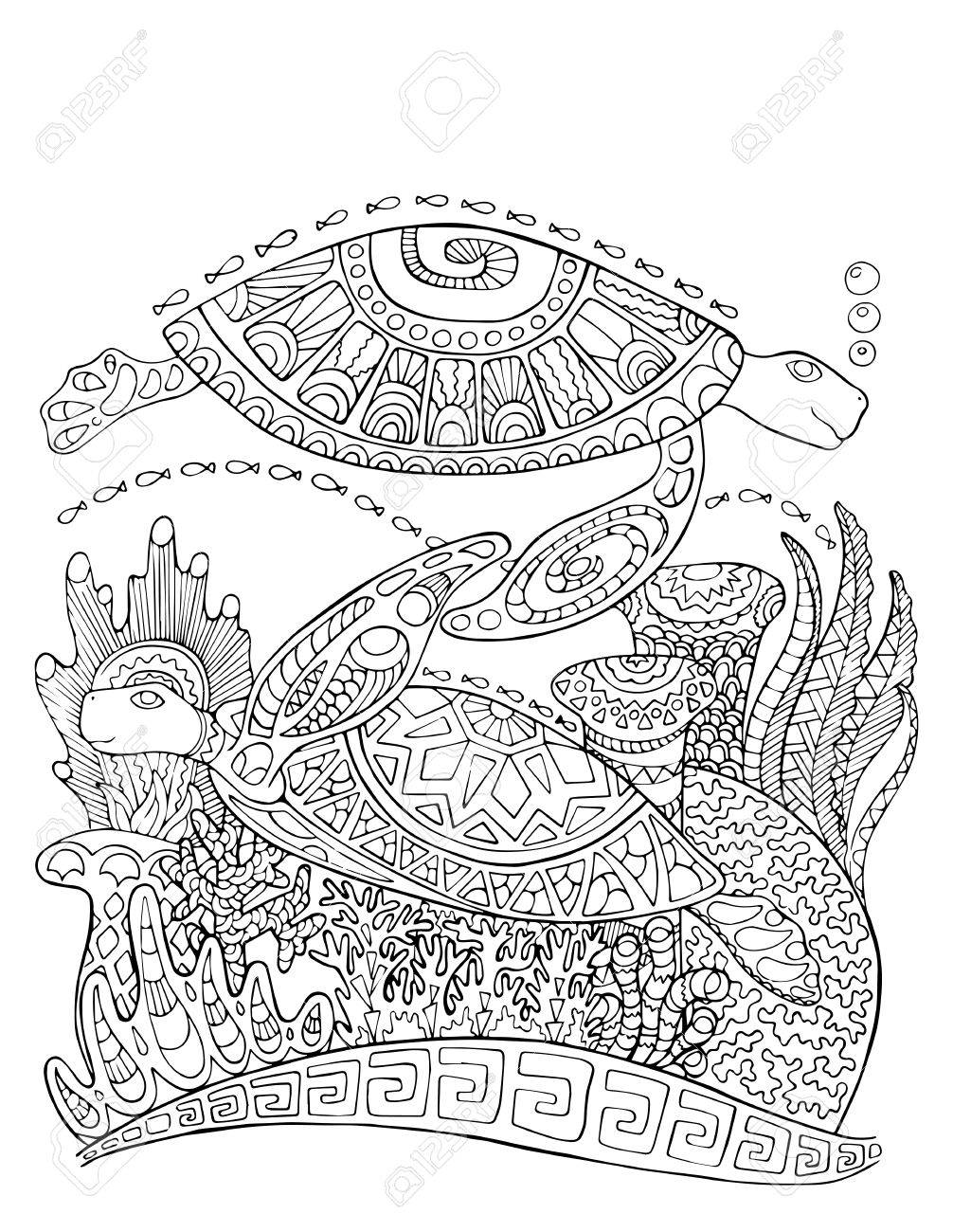 1006x1300 Sea Turtle Doodle Style Coloring Page. Underwater Vector