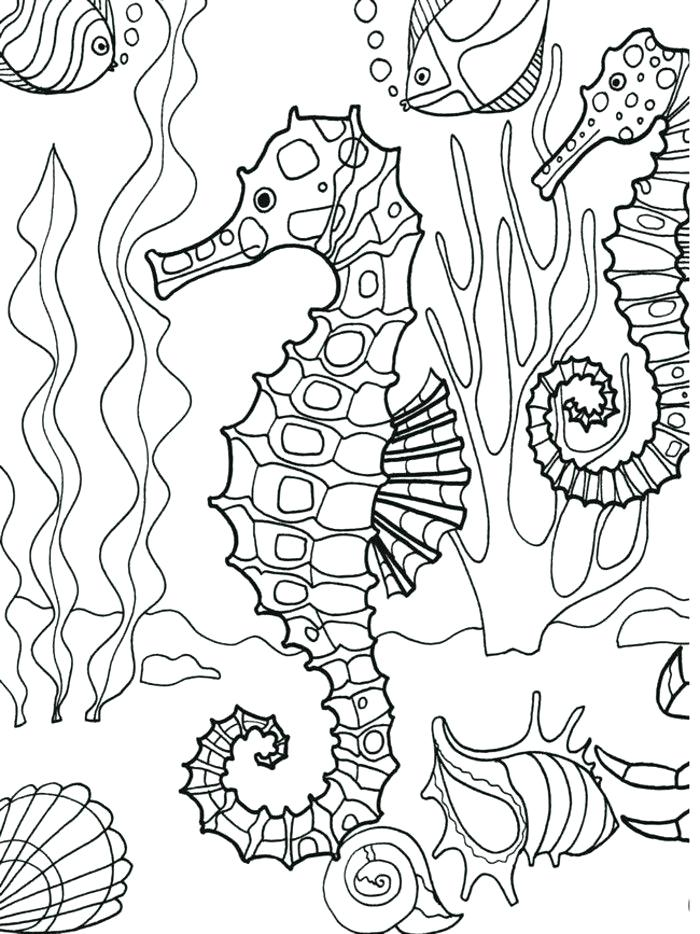 700x934 Stunning Underwater Coloring Pages 97 With Additional Coloring
