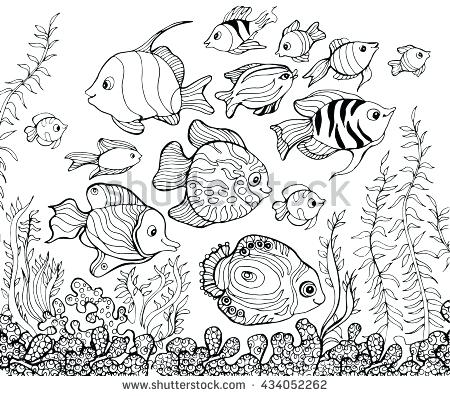 450x396 Underwater Coloring Page Outline Drawing Pages For Kids Underwater