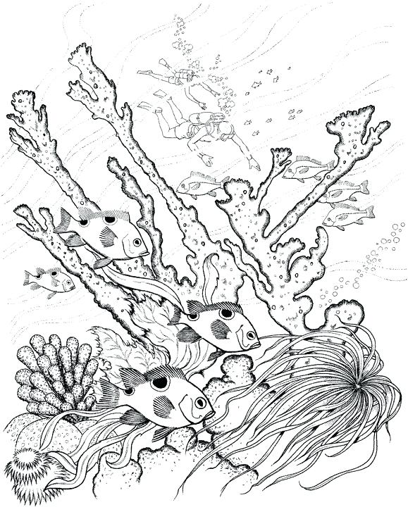 579x720 Underwater Coloring Pages Full Size Of Coloring Drawing Ocean
