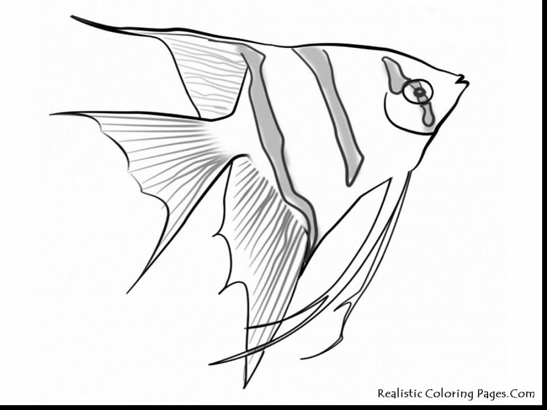 1126x844 Brilliant Underwater Sea Life Coloring Pages With Underwater
