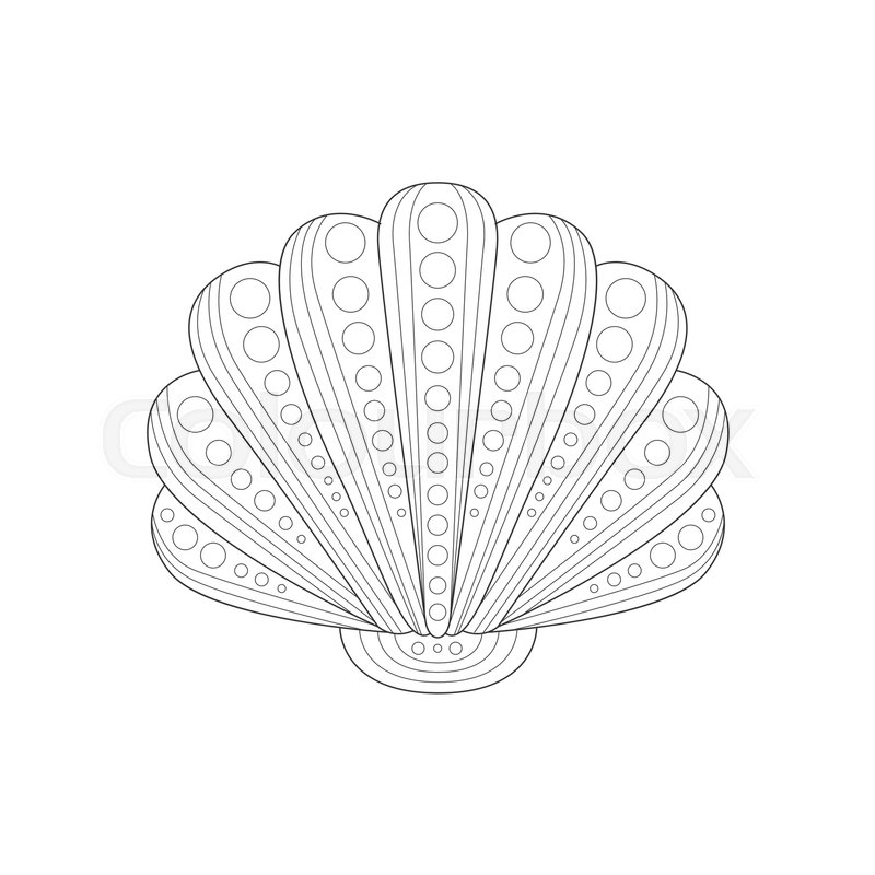 800x800 Clam Shell Sea Underwater Nature Adult Black And White Zentangle
