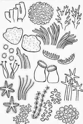 290x435 Drawing Underwater Coral Reef Wala Coral Reefs
