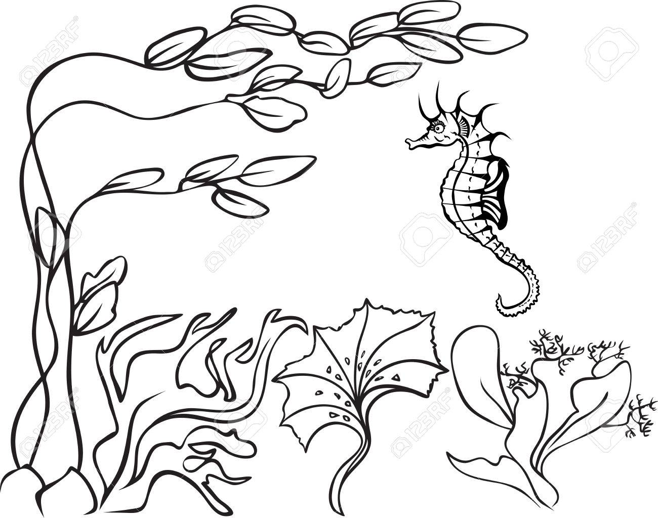 1300x1024 Sketch, Underwater, Seaweed And Sea Horse Royalty Free Cliparts