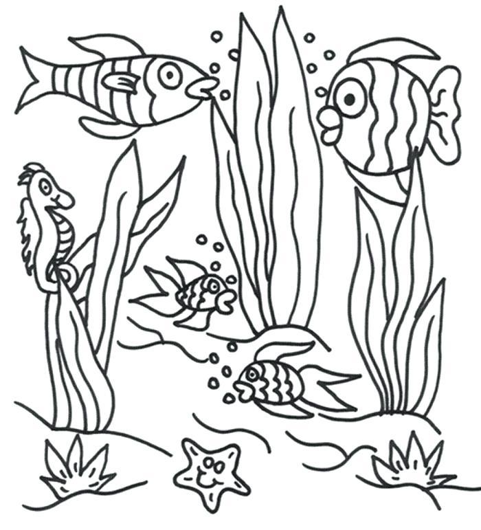 700x771 Ocean Scene Coloring Page Excellent Underwater Scene Coloring