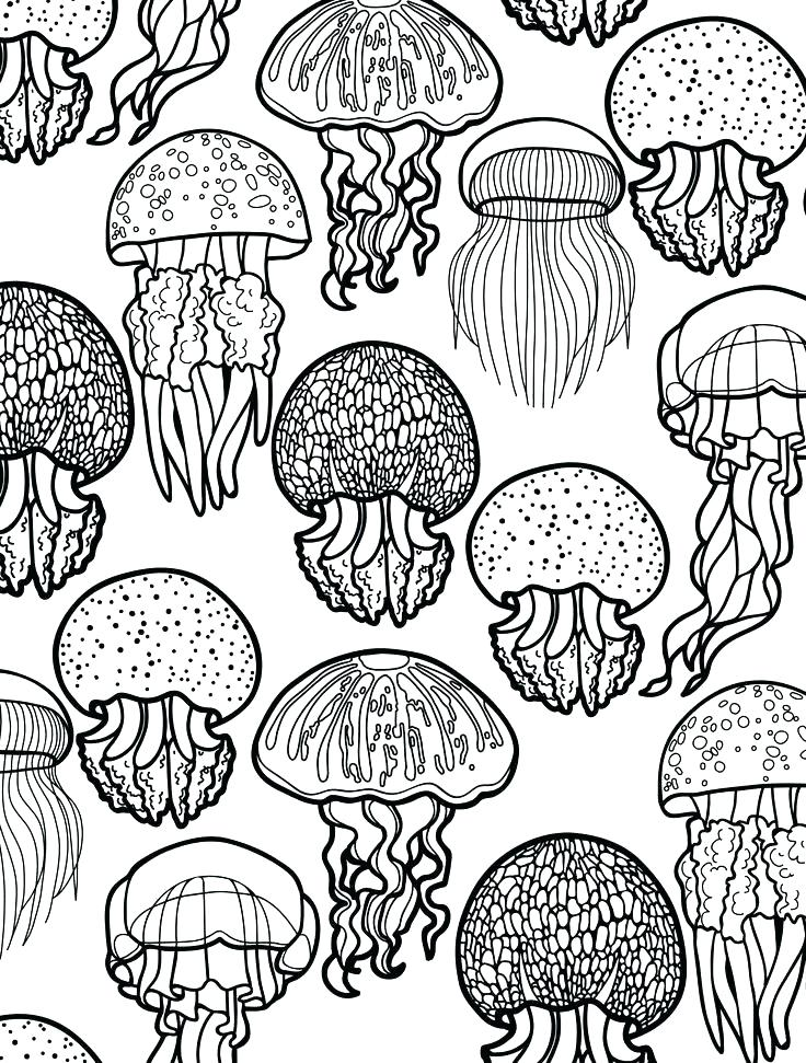 736x971 Ocean Scene Coloring Page Ocean Coloring Pages Ocean Scene