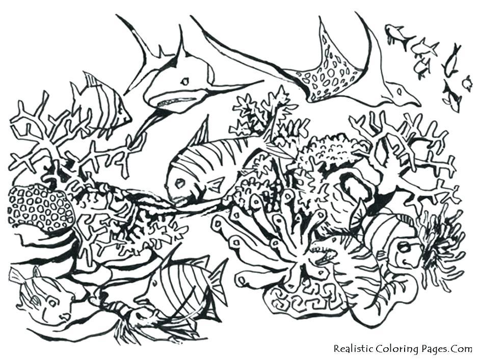 940x705 Ocean Scene Coloring Pages Free Printable Ocean Scene Coloring