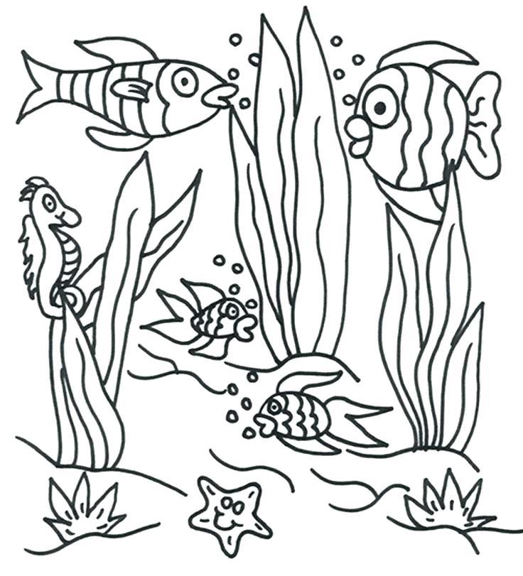 736x811 Ocean Scene Coloring Pages Ocean Scene Coloring Page Underwater